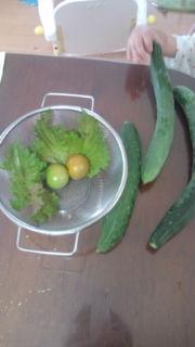収穫part<br />  3